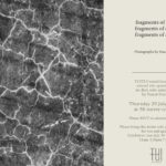Solo show / Pascal Harris / TuiTui Art space / Curated by Ryan Sun